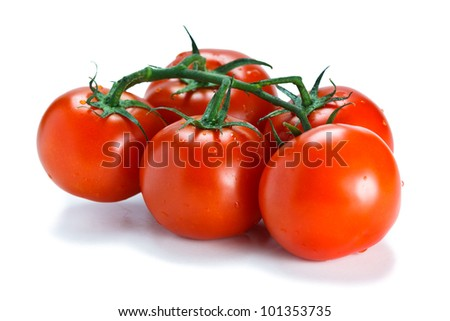 Lovely fresh vine ripened tomatoes. Isolated on white - stock photo