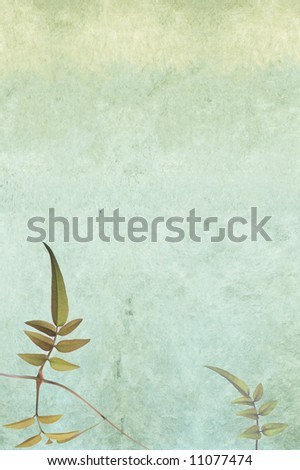 lovely light background image with interesting texture, floral elements and plenty of space for text