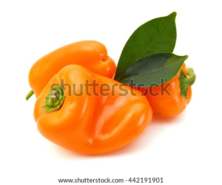 lovely mini peppers on white background  - stock photo