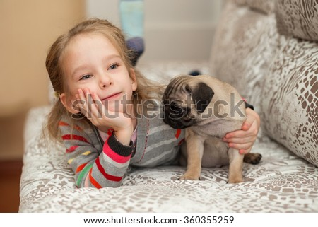 Lovely pug puppy playing with a girl