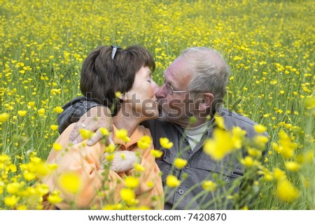 Lovely senoir couple kissing in a green grass field full of buttercups. - stock photo