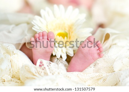 Lovely small baby's feet with a flower closeup - stock photo