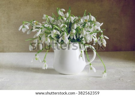 Lovely still life with bouquet of snowdrops - stock photo
