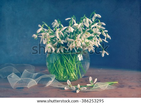 Lovely still life with bouquet of snowdrops in glass vase. - stock photo