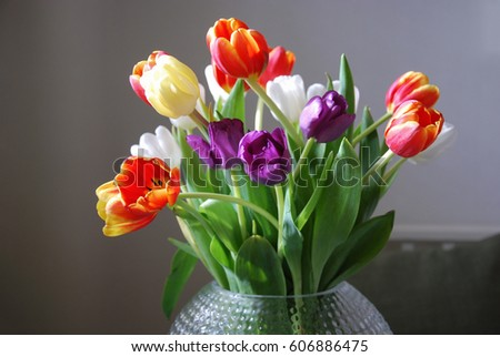Lovely tulips bouquet in a vase by natural light