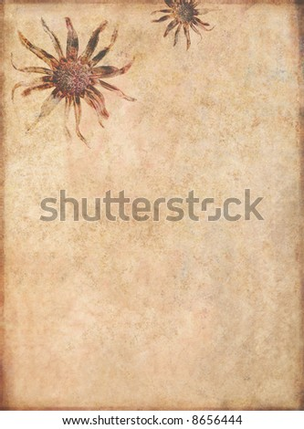 lovely useful background image with interesting texture and floral elements with plenty of space for text - stock photo