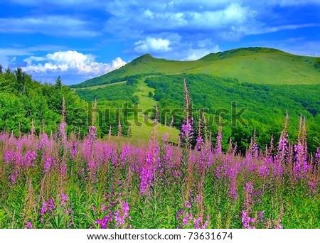 Lovely view of mountainous landscape in spring - stock photo