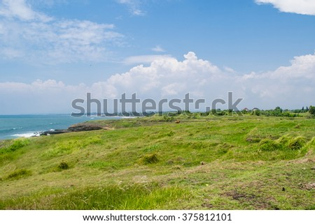 Lovely view on the green valley and ocean, Bali - stock photo