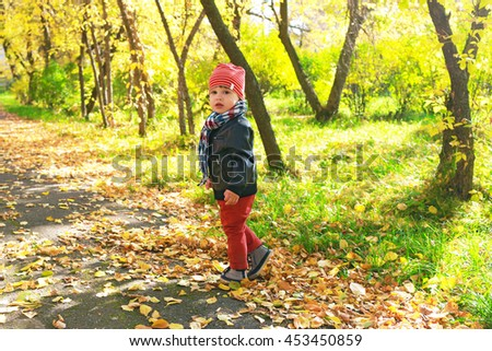 lovely 2 years toddler boy walking in autumn outdoors