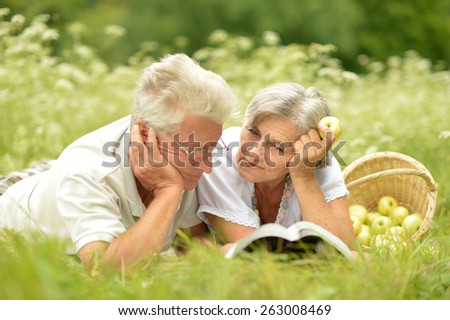 Loving elderly couple having a picnic in the summer - stock photo