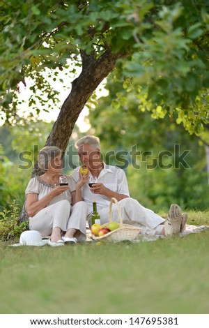 loving mature couple spending time together outdoors - stock photo