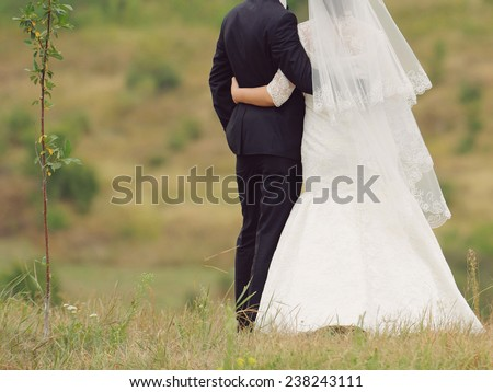 loving newlyweds embracing in field - stock photo