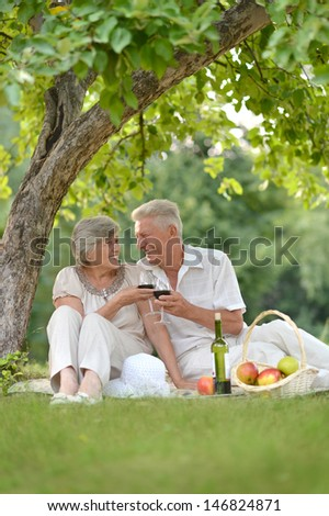loving older couple spending time together outdoors - stock photo