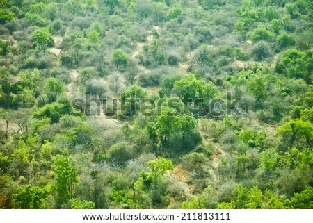 low aerial view of the wilderness of South Sudan - stock photo