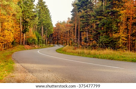 Low angle view along the center line of a deserted winding tarred road through colorful autumn trees