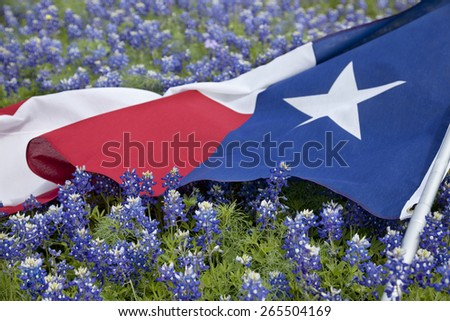 Low angle view of a Texas flags laying among bluebonnet flowers on a bright spring day in the Texas Hill Country - stock photo