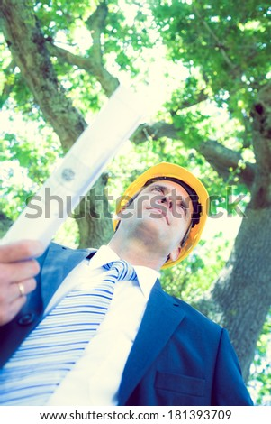 Low angle view of confident architect holding blueprint against tree - stock photo