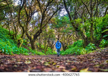 Low angle view of male tourist hiking through mystic forest of ancient trees on the island of El Hierro near the coast of Morocco, Canary Islands, Spain, Europe - stock photo