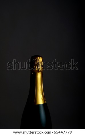 Low key shot of a bottle champagne - stock photo