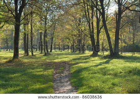 Low Light Landscape with Trail and Grassy Meadow - stock photo