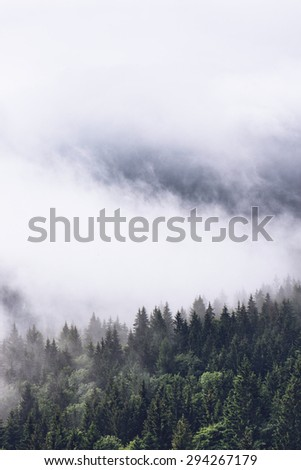 Low lying cloud over evergreen forests clinging to the sides of the mountain in an atmospheric nature background - stock photo