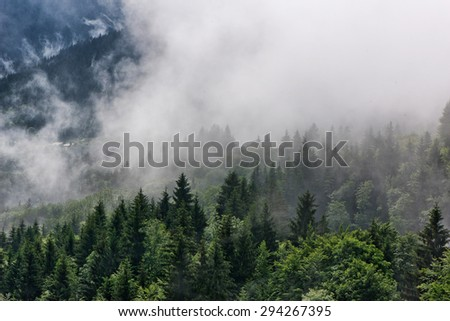 Low lying mist or cloud over evergreen forests in an atmospheric ethereal landscape - stock photo