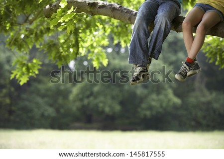 Low section of little boy and girl relaxing on tree branch - stock photo