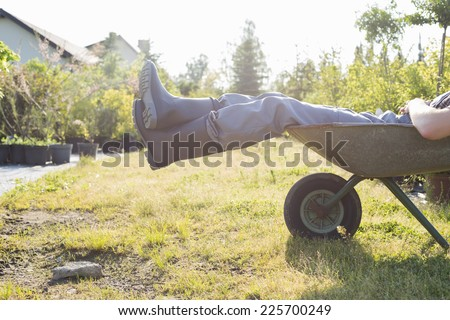 Low section of man relaxing in wheelbarrow at garden - stock photo