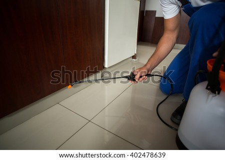 Low section of man spraying pesticide at home - stock photo