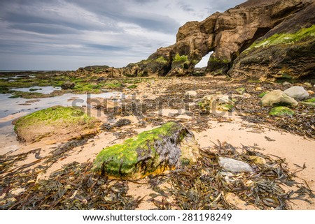 Low tide at Saddle Rocks / Saddle Rocks at Cullercoats, Whitley Bay here at low tide showing the seaweed, rocks and sand