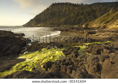 Low tide exposing the shore at Cape Perpetua. - stock photo