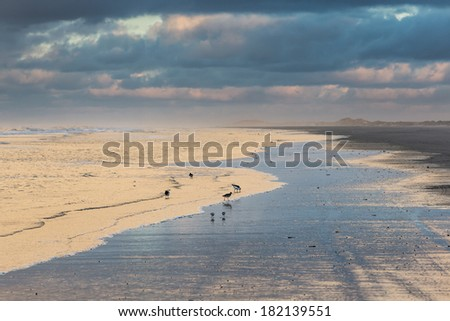 Low tide on the beach at sunset - stock photo