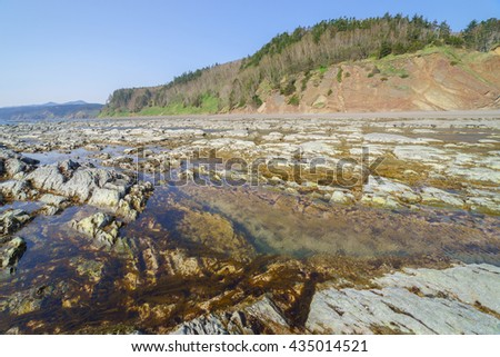 Low tide on the rocky shore of Sakhalin Island, Russia.