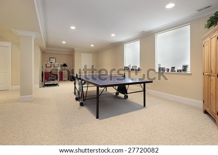 Lower level with ping pong table