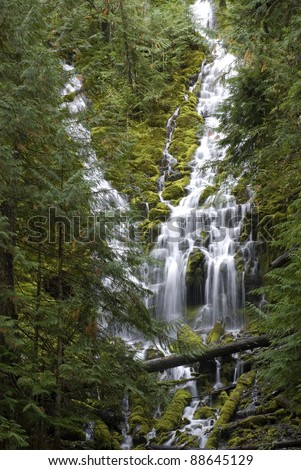 Lower Proxy Falls, waterfall in the forest in Oregon. - stock photo