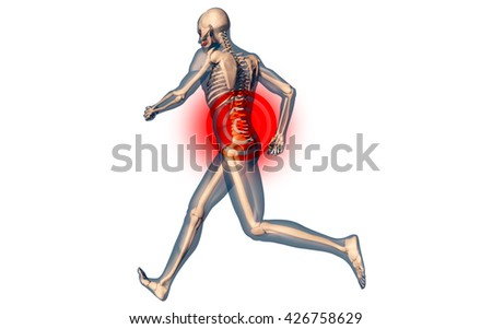 Lower Spine Pain in Human Body Transparent Design 3D Illustration - stock photo