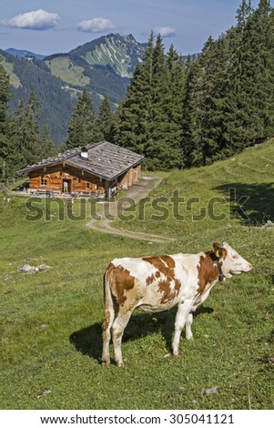 Lower Wildfeldalm - idyllic mountain lodge at you pass the increase to Rotwand summit - stock photo