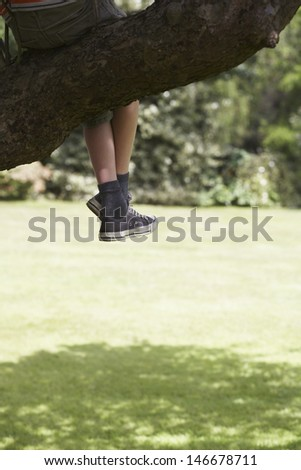 Lowsection of a boy sitting on branch of tree over meadow - stock photo