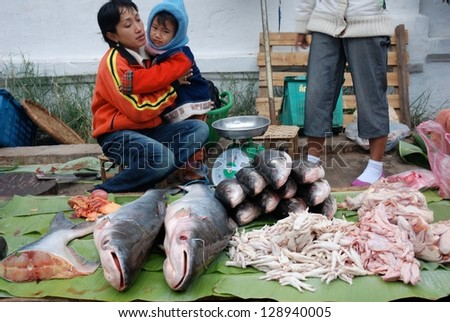 LUANG PHRABANG - JAN 25 : Unidentified woman was selling fishes in open-air market on January 25, 2009 in Luang Phrabang, Laos. Luang Prabang is a city located in north central Laos.
