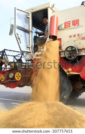 LUANNAN COUNTY - JUNE 15: Harvester was threshing wheat in the field, on june 15, 2014, Luannan county, Hebei Province, China