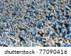 LUBIN, POLAND - APRIL 29: Lech Poznan supporters cheer during a match between Polish Ekstraklasa and KGHM Zaglebie Lubin - Lech Poznan on April 29, 2011 in Lubin, Poland. The score was 1-0. - stock photo