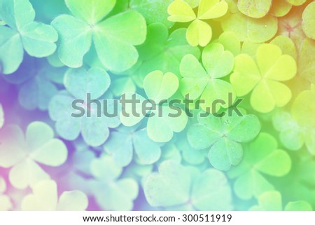 Lucky clovers with rainbow, Saint Patrick's Day background , soft blur for background with vintage retro style. - stock photo