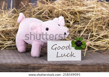 Lucky pig with cloverleaf and card with text good luck/good luck/english - stock photo
