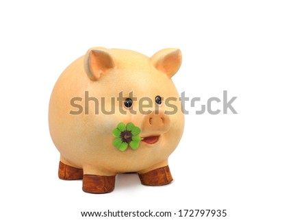 Lucky pig with lucky clover - stock photo