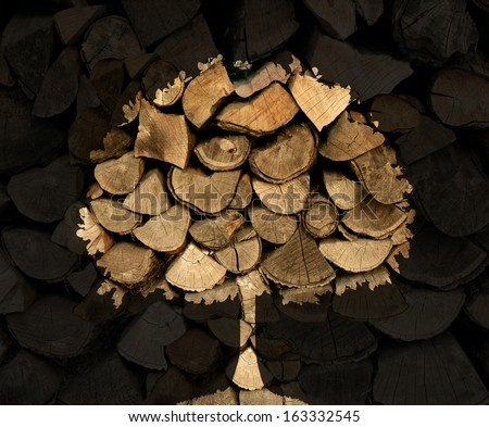 Lumber industry concept with a stack of chopped tree logs or firewood with a shadow in  the shape of a tree symbol as a nature icon of  forestry and environmental conservation issues. - stock photo