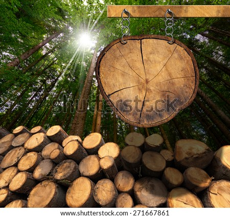 Lumber Industry Sign. Trunks of trees cut and stacked and empty wooden sign, a section of tree trunk, hanging with metal chain on a wooden pole with green forest in the background with sun rays - stock photo