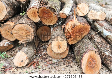 lumber wood piled together - stock photo