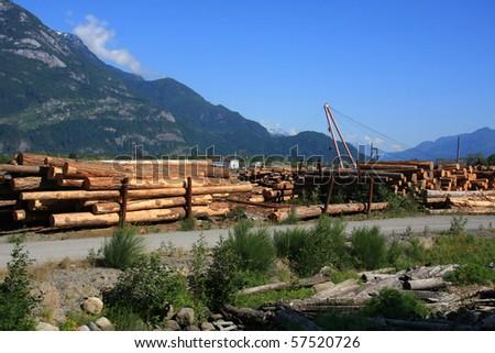 Lumber yard in British Columbia, Canada. - stock photo
