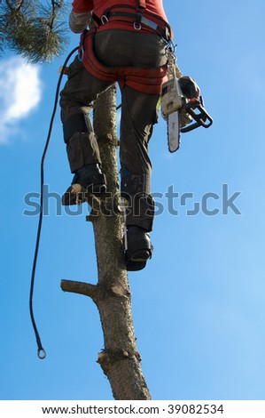 lumberjack - stock photo