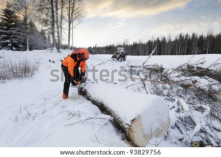 lumberjack, forest-worker in action, winter and snowy landscape - stock photo
